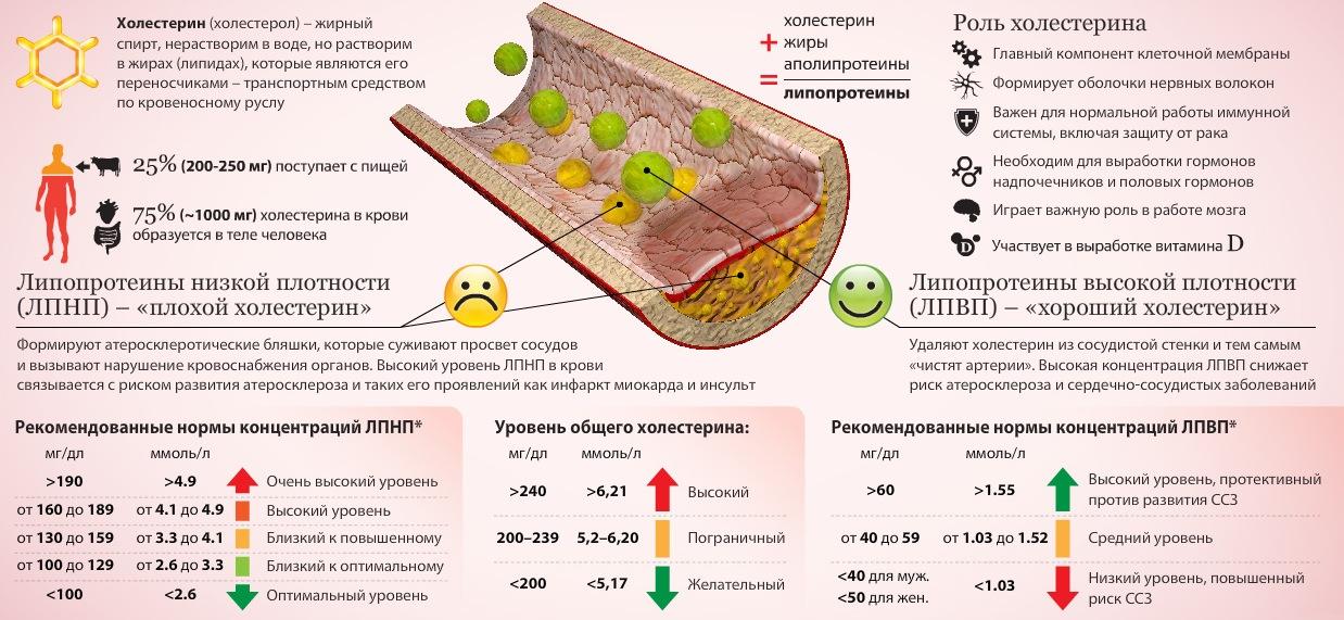 холестерин общий повышен диета